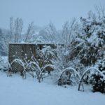 maulevrier-parc-oriental-hiver-kyudojo-palissade
