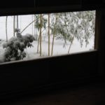 toulouse-kyudojo-hiver-bambou