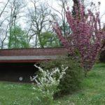 toulouse-kyudojo-printemps-cerisier