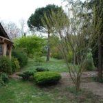 toulouse-kyudojo-printemps-entree-jardin