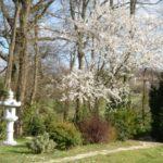toulouse-kyudojo-printemps-lanterne