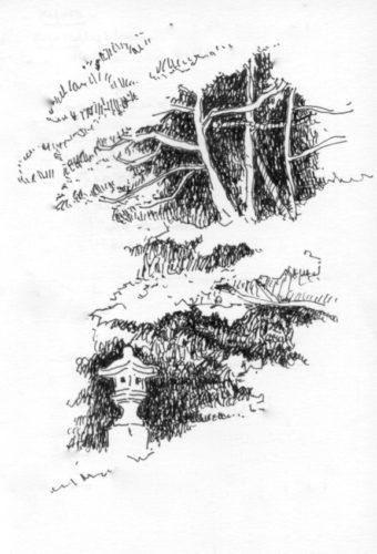 lanterne et profondeur noire entre les arbres , Michel au Japon.